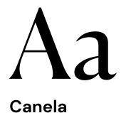 website-design-website-development-branding-iconic-limos